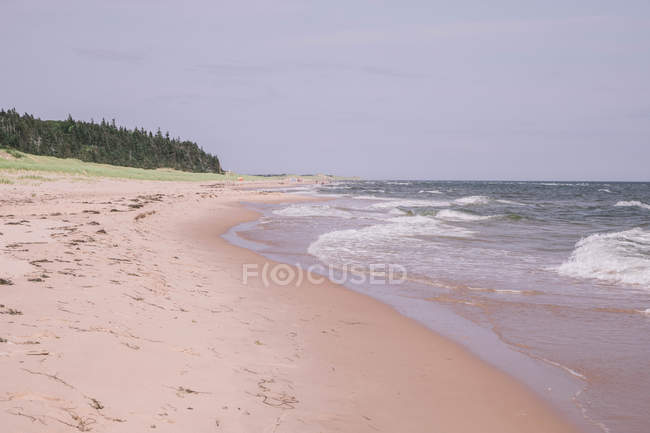 Beautiful sandy shore of beach and scenic sea waves — Stock Photo