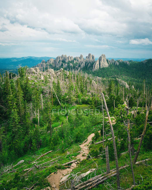 Beautiful landscape with rocky mountains, fallen trees and green vegetation — Foto stock
