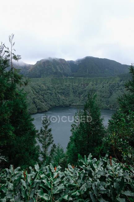 Corpo d'acqua circondato da montagne e vegetazione verde — Foto stock