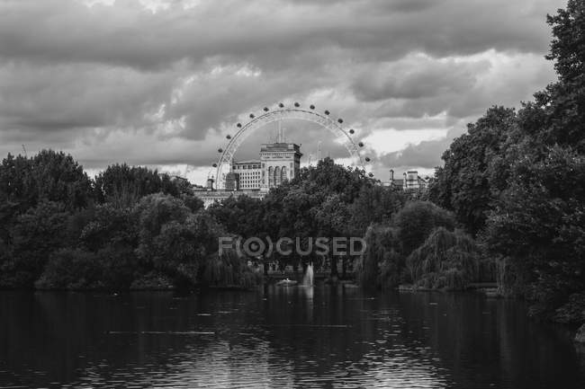 Black and white image of ferris wheel near trees and lake in park — Photo de stock