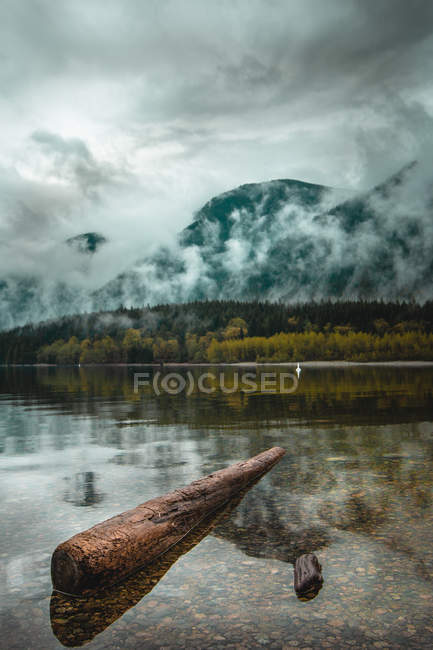 Green trees beside calm body of water and mountains in clouds — Stock Photo