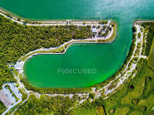 Vista aerea di alberi a foglia verde vicino al corpo d'acqua — Foto stock
