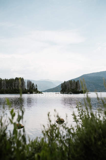 Selective focus of beautiful green trees, scenic lake and mountains — Stock Photo