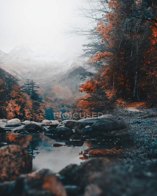 Paisagem surpreendente com Rio calmo, pedras, árvores do outono e montanhas no dia nevoento — Fotografia de Stock
