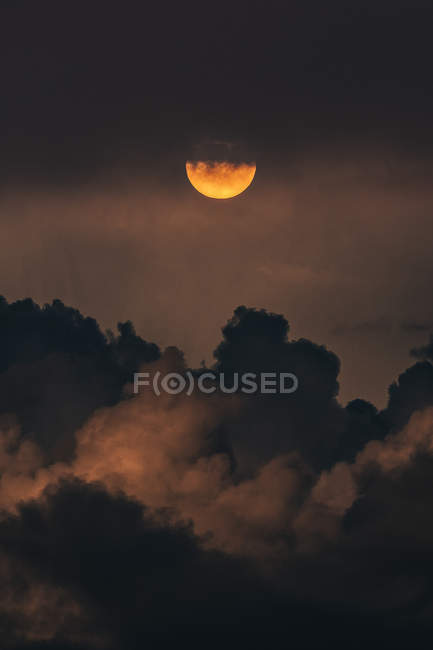 Amazing natural view of silhouettes of trees, night sky with clouds and full moon — Stock Photo