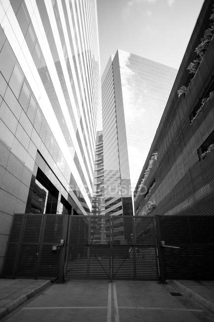 Grayscale photo of high-rise buildings in urban city, low angle view - foto de stock