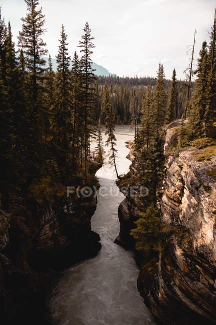 Vista ad angolo alto del fiume rapido tra le rocce con alberi verdi — Foto stock