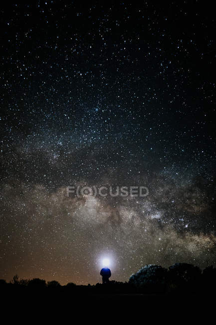 Silhouette of person with flashlight standing between trees against majestic starry night sky — стокове фото