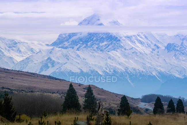 Erstaunliche Landschaft mit schneebedeckten Bergen und grüner Vegetation — Stockfoto