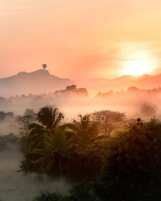 Чудовий тропічний пейзаж з зеленими деревами та мальовничими горами на заході сонця — стокове фото