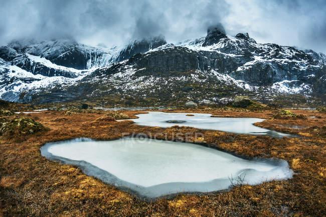 Acqua circondata da piante e bellissime montagne rocciose innevate — Foto stock