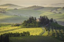 Podere Belvedere, San Quirico d 'Orcia, Val d' Orcia, Tuscany, Italy, Europe — стоковое фото
