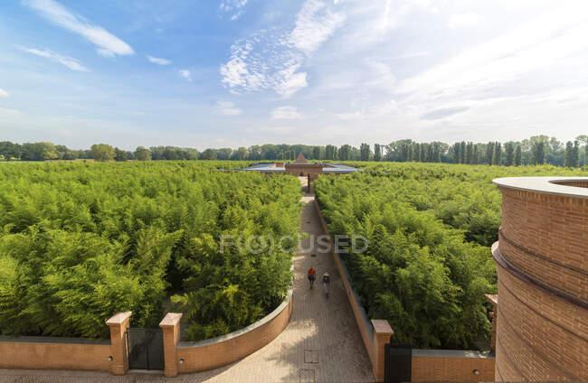Labirinto della Masone labyrinth,Fontanellato,Parma,Emilia Romagna,Italy, Europe — Stock Photo