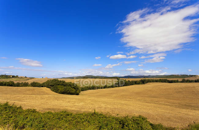 Countryside around Colle Val dElsa,Tuscany, Italy, Europe - foto de stock