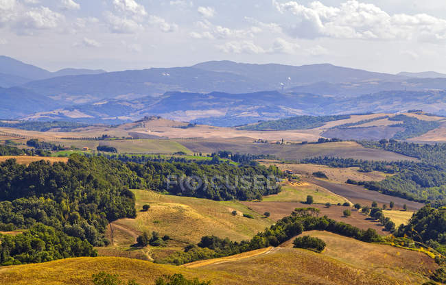 Countryside around Montepulciano,Tuscany, Italy, Europe - foto de stock