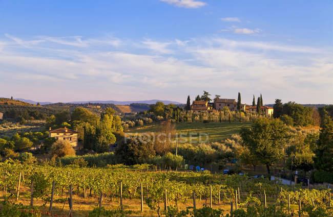 Countryside around San Gimignano,Tuscany, Italy, Europe — Stock Photo