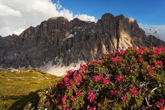 Civetta face nord, Dolomites, Alleghe, Veneto, Italie — Photo de stock