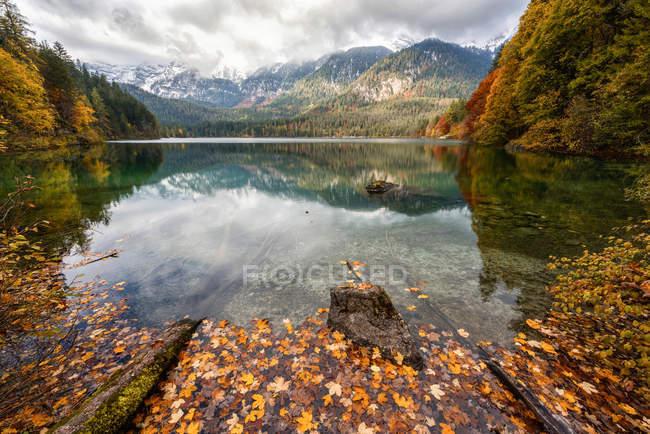 Autumn reflections at  Tovel lake, Ville d'Anaunia, Val di Non, Adamello-Brenta Natural Parck, Trentino-Alto Adige, Italy — Stock Photo