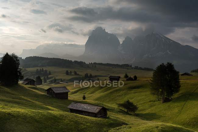 Amanhecer no Alpe di Siusi/Seiser Alm. No fundo os picos de Sella, de Sassolungo/de Langkofel e de Sassopiatto/Plattkofel, Alpe di Siusi, Dolomites, Trentino-Alto Adige, Italy — Fotografia de Stock