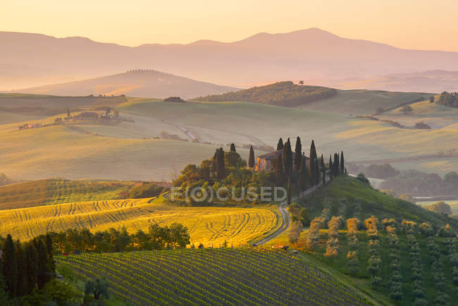 Belvedere farmhouse at sunrise, Orcia Valley (Val d'Orcia), UNESCO World Heritage Site, Tuscany, Italy, Europe - foto de stock
