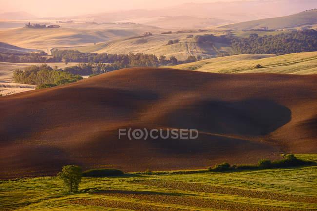 Fallow field, Orcia Valley (Val d 'Orcia), Património Mundial da UNESCO, Toscana, Itália, Europa — Fotografia de Stock