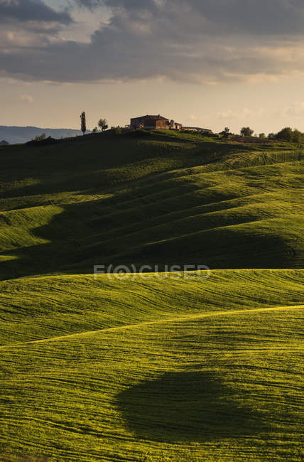 Orcia Valley at sunset, Orcia Valley (Val d'Orcia), UNESCO World Heritage Site, Tuscany, Italy, Europe — Stock Photo