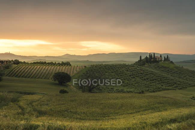Alba sulle dolci colline verdi, Val d'Orcia (Val d'Orcia), Patrimonio dell'Umanità UNESCO, Toscana, Italia, Europa — Foto stock