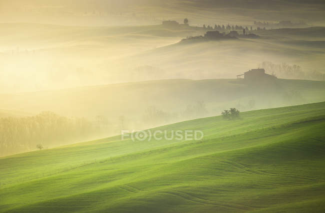 Countryside, San Quirico d'Orcia countryside, Val d'Orcia, Tuscany, Italy, Europe — Stock Photo