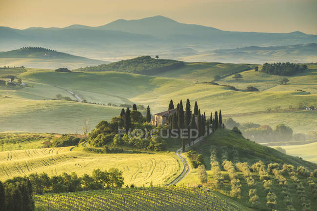 Podere Belvedere, San Quirico d'Orcia, Val d'Orcia, Tuscany, Italy, Europe — Stock Photo