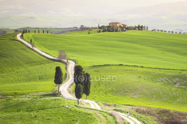 Podere Terrapille, Pienza, Val d'Orcia, Toscana, Italia, Europa — Foto stock