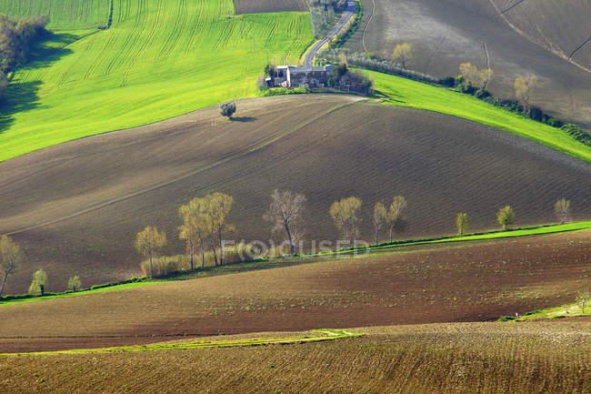 Countryside, Landscape, Recanati, Marche, Itaaly, Europe — Stock Photo