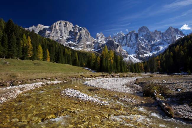 Travignolo torrent in autumn landscape at  Paneveggio, Pale di San Martino natural park, Fassa valley, Venegia valley, Trentino, Italy, Europe — Stock Photo
