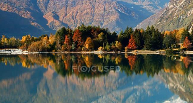 I colori autunnali si riflettono nelle acque calme del Lago Mezzola, Novate Mezzola, Valchiavenna, Vallespluga, Lombardia, Italia, Europa — Foto stock