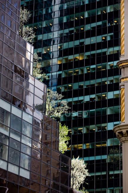 5-й авеню, Манхеттен, Нью-Йорк, Нью-Йорк, США — стокове фото