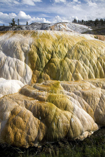 Mammoth Hot Springs, Yellowstone National Park, Wyoming, United States of America (USA), North America — Stock Photo