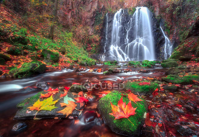 Autumn at Pevereggia Falls, Sessa, Switzerland, Europe — Stock Photo