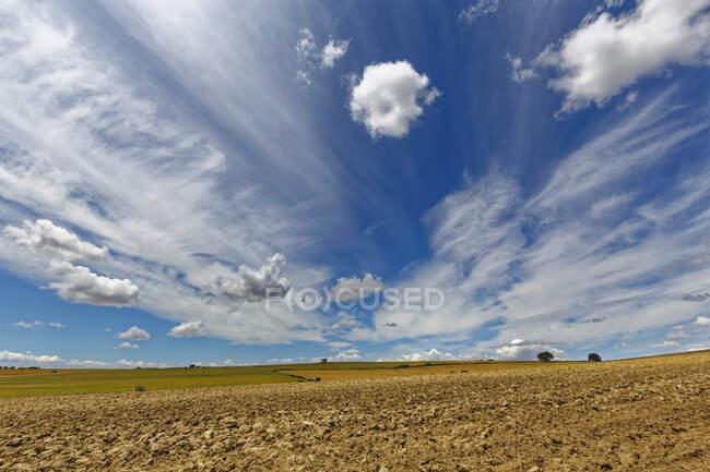 Campo di grano e cielo nuvoloso, Murge, Puglia, Italia, Europa — Foto stock