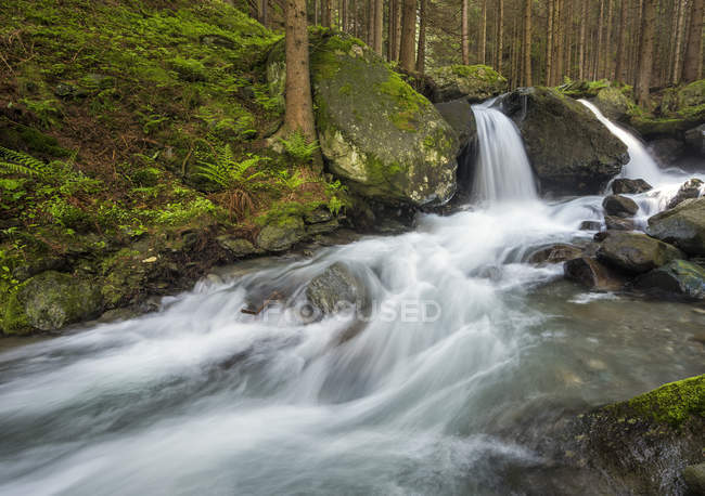 The Pojen creek in the Aurina Valley, Lutago / Luttach, Aurina Valley, Trentino-Alto Adige, Italy, Europe — стоковое фото
