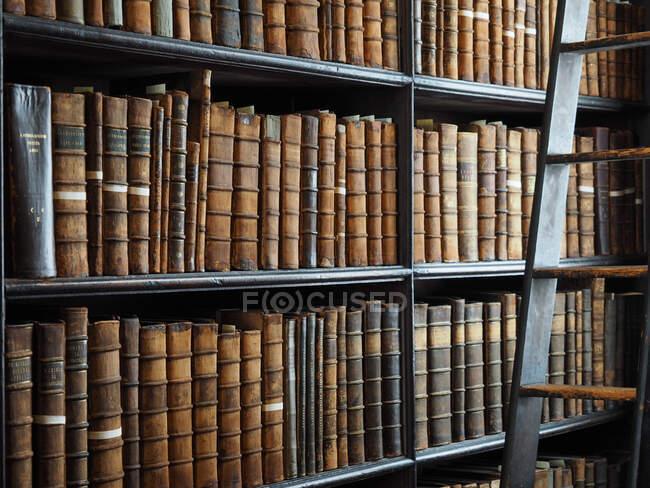 Langer Raum, Altes Bibliotheksgebäude, 18. Jahrhundert, Trinity College, Dublin, Republik Irland, Europa — Stockfoto