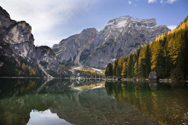 The Pragser Wildsee (Lake Prags, Lago die Braies) is one of the main toruist attractions in South Tyrol. In late fall the yellow larch trees are reflecting in the dark water of the lake.Prags, Nature Park Fanes Sennes Prags, South Tyrol, Alto Adige, — Stock Photo