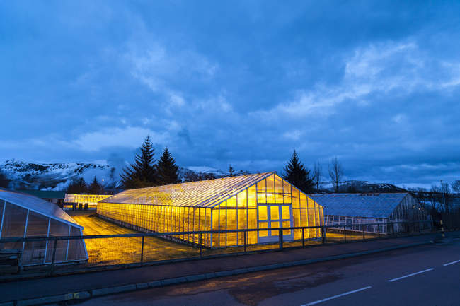 Greenhouses in Hveragerdi in winter. They are heated by geothermal energy and supply a large part of the icelandic demand of vegetables like tomatoes and bell peppers, europe, northern europe, iceland, march — Stock Photo