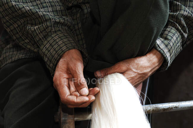 Woman holding Silk factory, Srinagar, Kashmir, India — Stock Photo