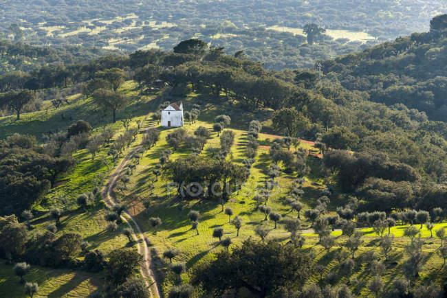 Пейзаж біля села Evoramonte в Алентежу. Європа, Південна Європа, Португалія, Алентежу — стокове фото
