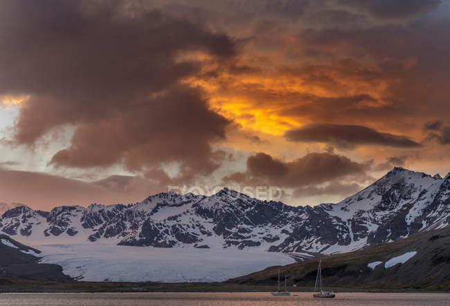 St. Andres Bay sulla Georgia del Sud durante il tramonto. Antartide, Subantarctica, Georgia del Sud, ottobre — Foto stock