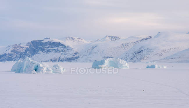 Pescadores do Sistema de Fiordes Uummannaq, noroeste da Gronelândia. Os fiordes são congelados durante o inverno, os pescadores usam trenós de motor ou cão para dirigir para buracos no gelo para abaixar até 1000m de linhas longas com isca. América do Norte, Gronelândia — Fotografia de Stock