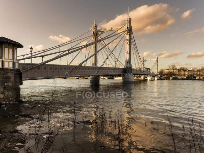 Ponte di Albert, chelsea, Londra, Inghilterra, Regno Unito — Foto stock