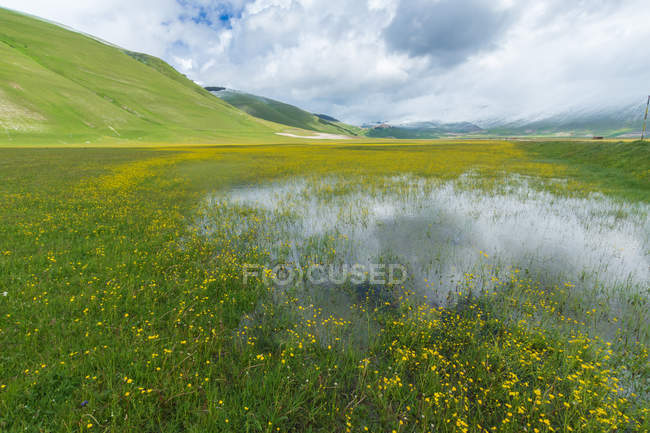 View of the Pian Grande of Castelluccio di Norcia, Umbria, Italy, Europe — Photo de stock