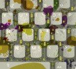 Микробы на клавиатуре компьютера — стоковое фото