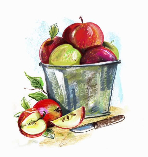 Pommes mûres dans un seau — Photo de stock