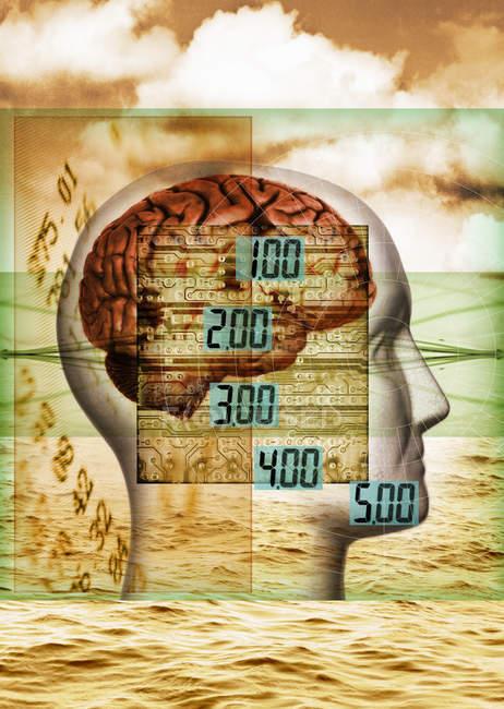 Цифровые числа над мозгом — стоковое фото
